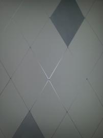 metallic harliquin detail