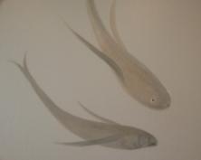Fish mural detail