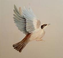Sparrow mural detail